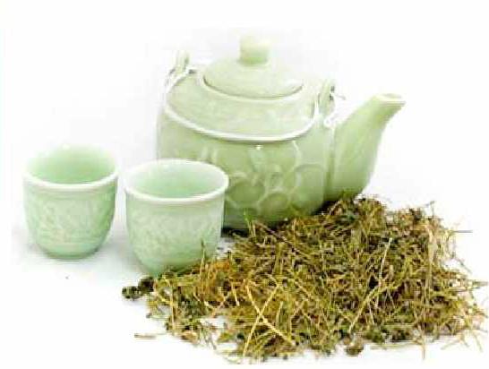 Uống trà giảo cổ lam hàng ngày giúp cải thiện sức khỏe tốt hơn