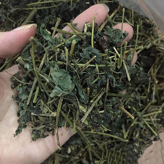 Loại trà giảo cổ lam dạng khô